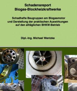 Schadensreport für Biogas BHKWs